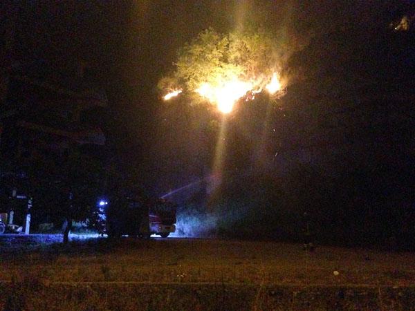 incendio marcellina case minacciate