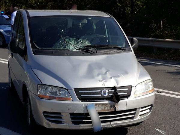 tortora incidente cicilista auto