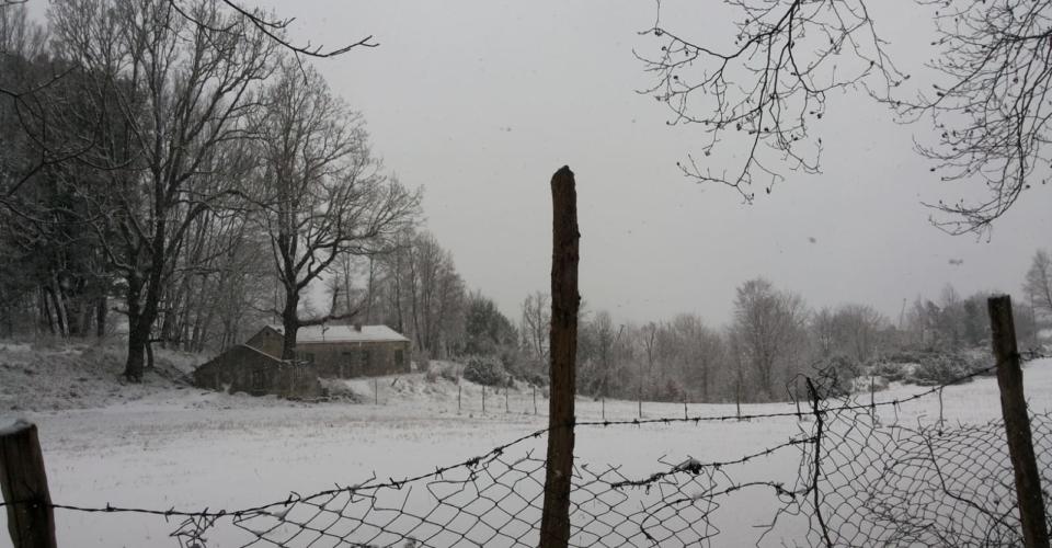 tortora-nevicata-febbraio-2019-1