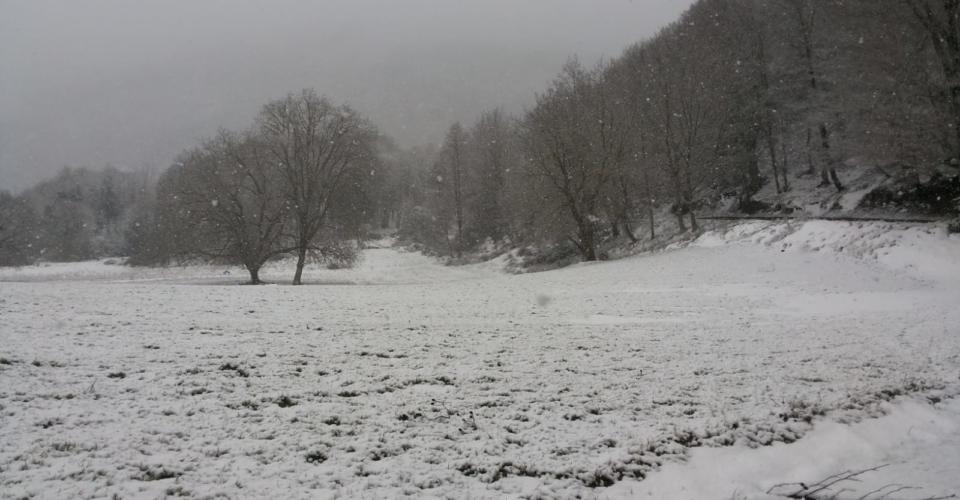 tortora-nevicata-febbraio-2019-10