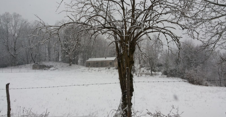 tortora-nevicata-febbraio-2019-2