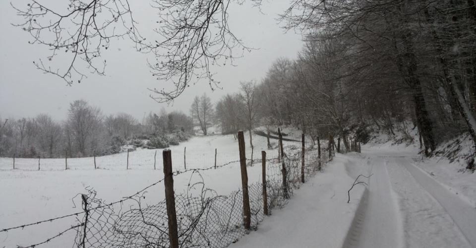 tortora-nevicata-febbraio-2019-3