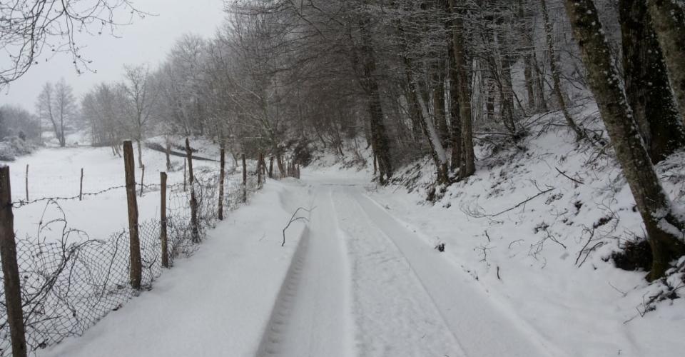 tortora-nevicata-febbraio-2019-5