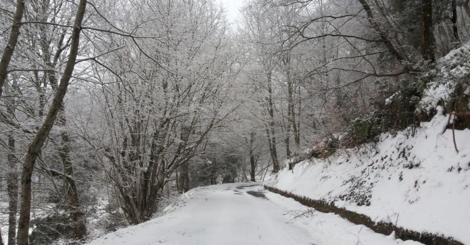 tortora-nevicata-febbraio-2019-6