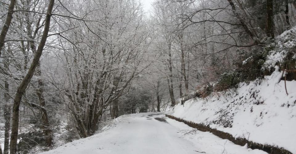 tortora-nevicata-febbraio-2019-7