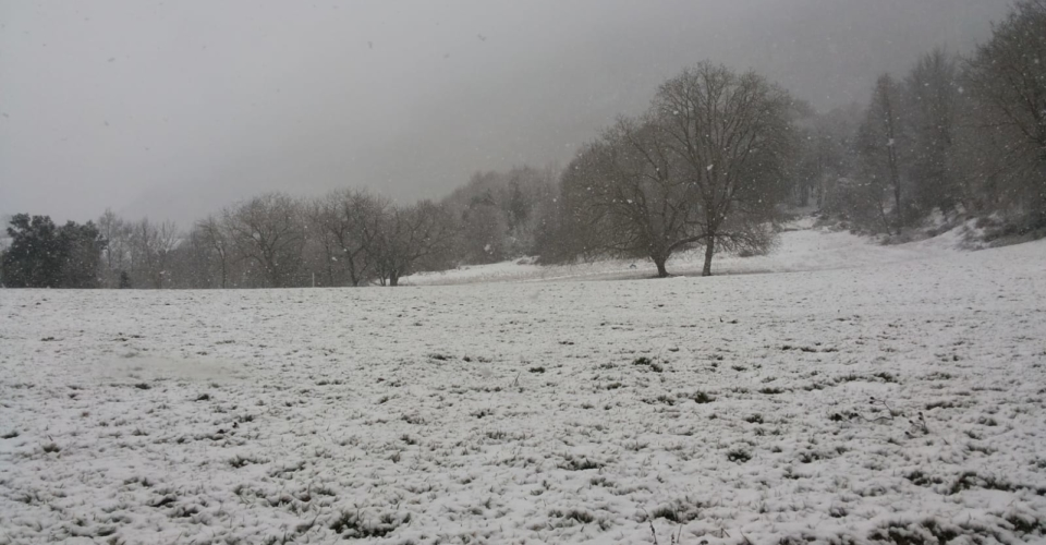 tortora-nevicata-febbraio-2019-9
