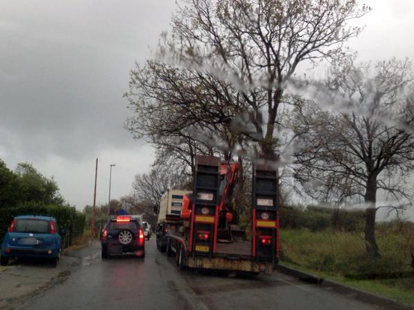 santa maria del cedro incidente via ulivi panda camion