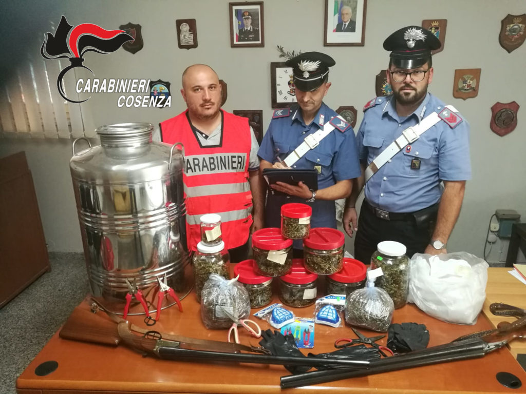 belvedere marittimo contadino marijuana arrestato fucili
