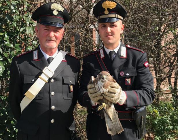 guardia piemontese poiana carabinieri