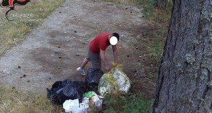parco sila rifiuti abbandono multa